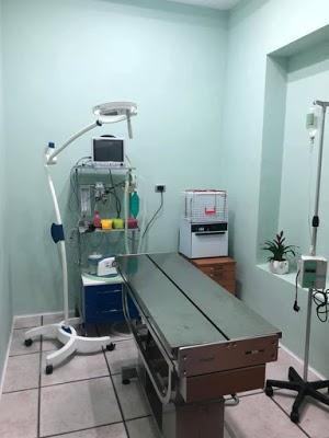 Foto di Clinica Veterinaria Vittorio Veneto di Angri  Salerno  Campania         Italia