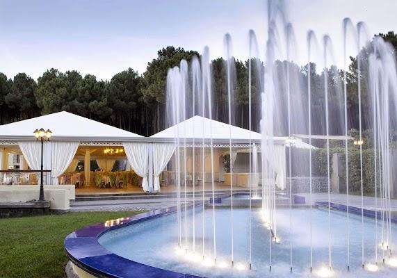 Foto di Hotel Parco Vesevus di Torre del Greco