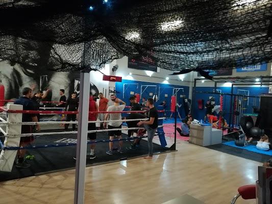 Foto di A.S.D.Serio Boxing Team di Cento  Unione Alto Ferrarese  Ferrara  Emilia Romagna  Italia