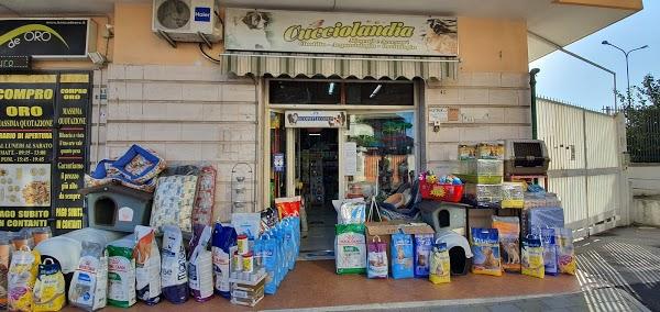 Foto di Cucciolandia%2Cdi Di Serio Salvatore di Acerra  Napoli  Campania         Italia