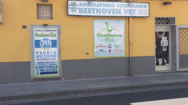 Foto di Ambulatorio Veterinario Beethoven Vet di Torre Annunziata  Napoli  Campania         Italia