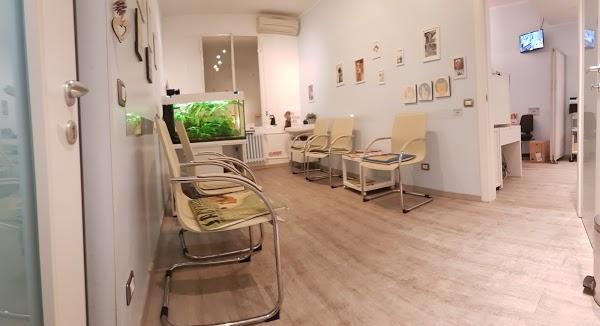 Foto di Pronto soccorso 24/24 Clinica Veterinaria via M.Gioia 67- Dr Cribiori di Milano  Lombardia  Italia