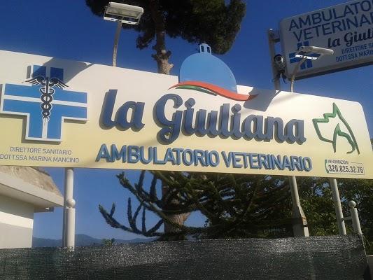 Foto di Ambulatorio Veterinario La Giuliana%2C Dott.ssa Mancino di Torre Annunziata  Napoli  Campania         Italia